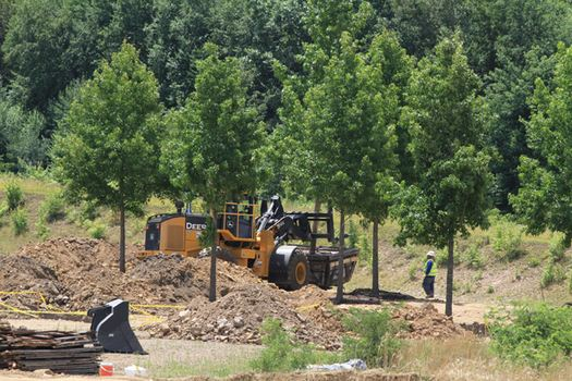 In July, workers on the site were busy placing trees at the site.