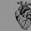 sketched illustration of a human heart with grey grainy overlay