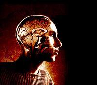Photo illustration of inner workings of man's skull