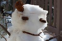 A sad slushy snow monster