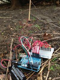 A DIY cicada soil temperature sensor