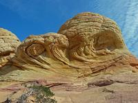 Brain rocks above the Wave (Coyote Butte North, Arizona)