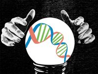 Illustration of a crystal ball revealing DNA