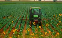 Tractor, field