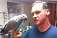 Jim Eggers and his parrot Sadie