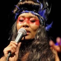 VV Brown performed at Brooklyn Bowl in Williamsburg on February 15