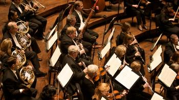 Members of the Dallas Symphony Orchestra