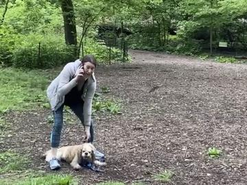 This image made from Monday, May 25, 2020, video provided by Christian Cooper shows Amy Cooper with her dog calling police at Central Park in New York.