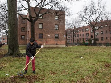 Clean-up day at Throggs Neck Houses in the Bronx, April 10, 2015.
