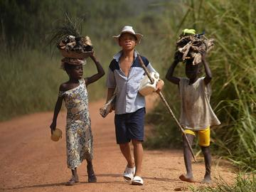 In this June 30, 2005 file photo, children living in a cocoa producing village walk back from the fields carrying wood and food stuff on their heads on the outskirts of the town of Oume, Ivory Coast.