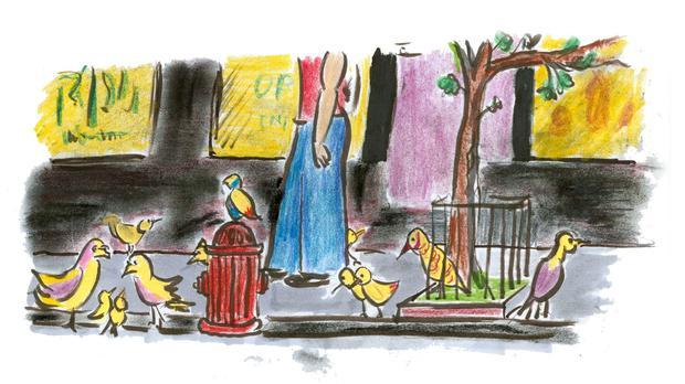 Birds on the city streets.