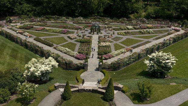 The Peggy  Rockafeller Rose Garden from above.