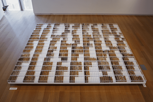 Correlation Drawing / Drawing Correlations: A Five Borough Reconnaissance Soil Survery, Margaret Boozer, 2012  Boozer collected soil samples from all over New York City.