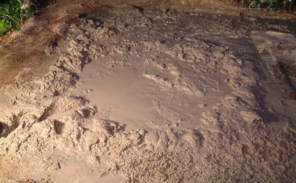 an upclose shot of a quicksand mud pit, that looks bubbly and thick gray sploshy