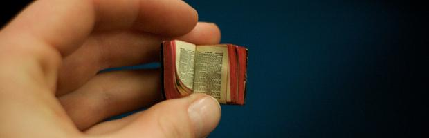 Tiny little book