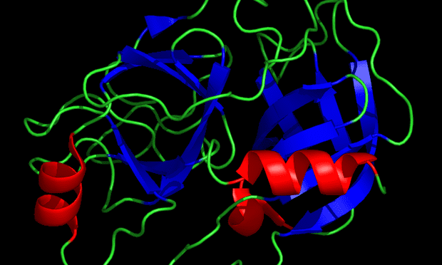 X-ray crystallographic structure of Trypsin