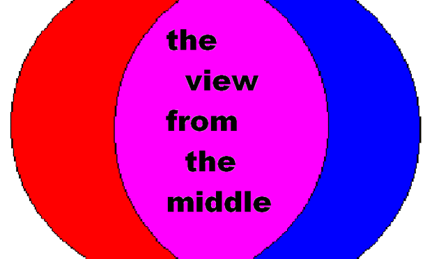 The View From The Middle