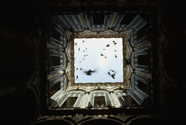 A flock of birds fly up from an enclosed courtyard in Old Havana, December 1987.
