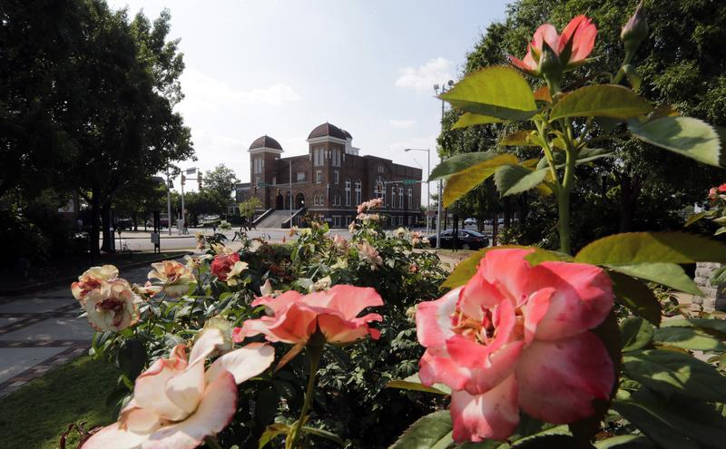 Roses bloom in Kelly Ingram Park, adjacent to the 16th Street Baptist Church, center, in Birmingham, Ala. on Friday, Sept. 6, 2013.