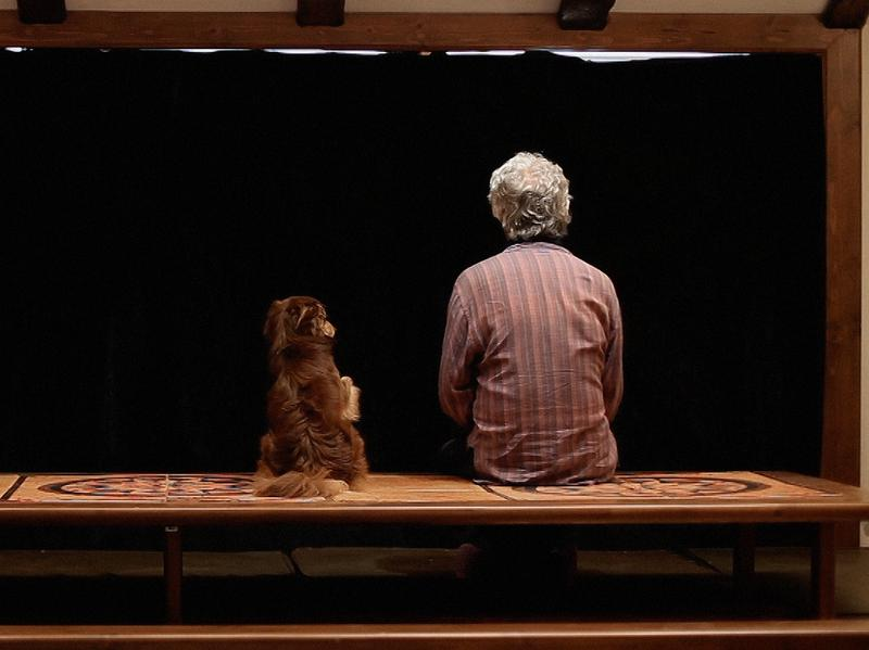 Filmmaker Jafar Panahi wrote, directed and produced <em>Closed Curtain — </em>a film based off his own personal experiences in hiding with his dog from the Iranian government.