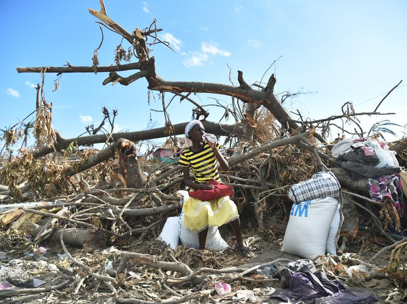 A Hurricane Matthew victim sits on a damaged tree after receiving food aid from the World Food Programme in Les Cayes, Haiti.