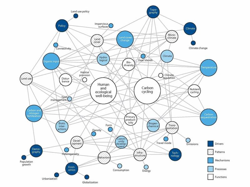 "The complex ""network structure"" of natural and human interactions in urban ecosystems."