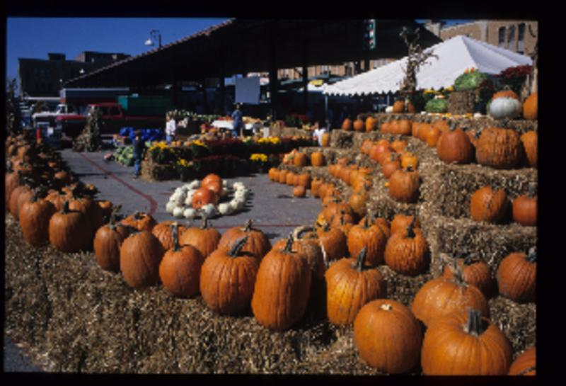 Display of pumpkins at Kansas City farmer's market.