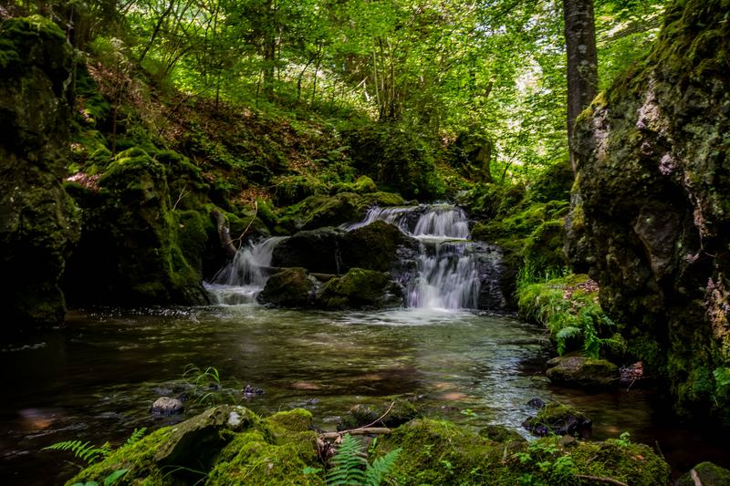 A 19th-century geographer found that waterfall's make C-major chords.