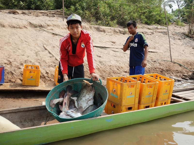 Damming The Mekong River: Economic Boon Or Environmental
