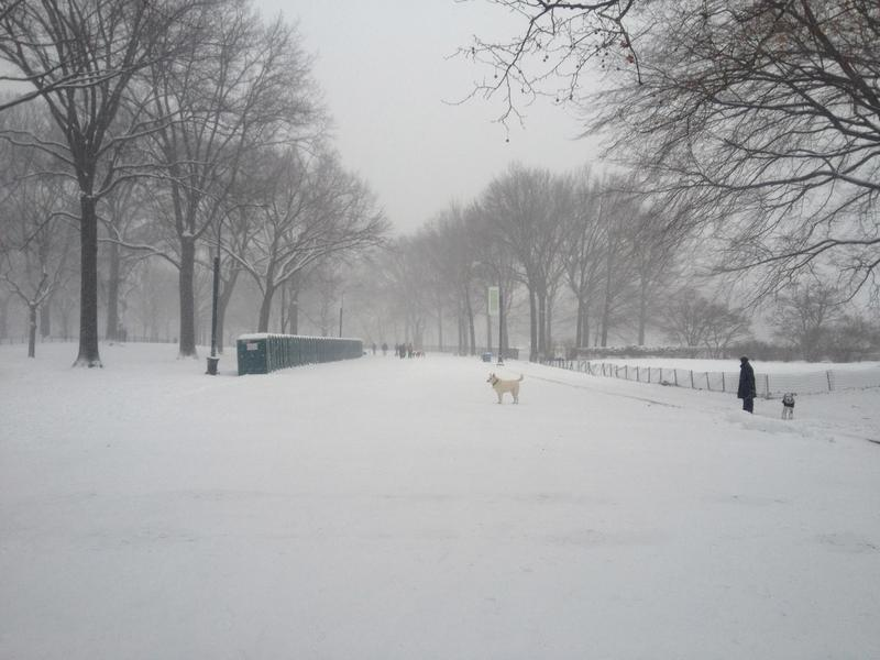 Central Park blanketed with snow.