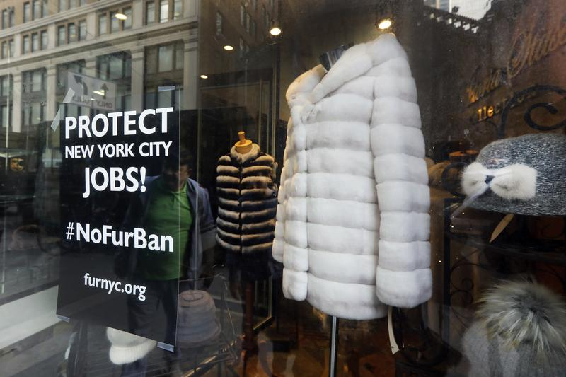New York City Considers Ban on Fur