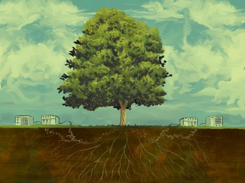 Air Conditioning and Sycamore Trees | The Anthropocene