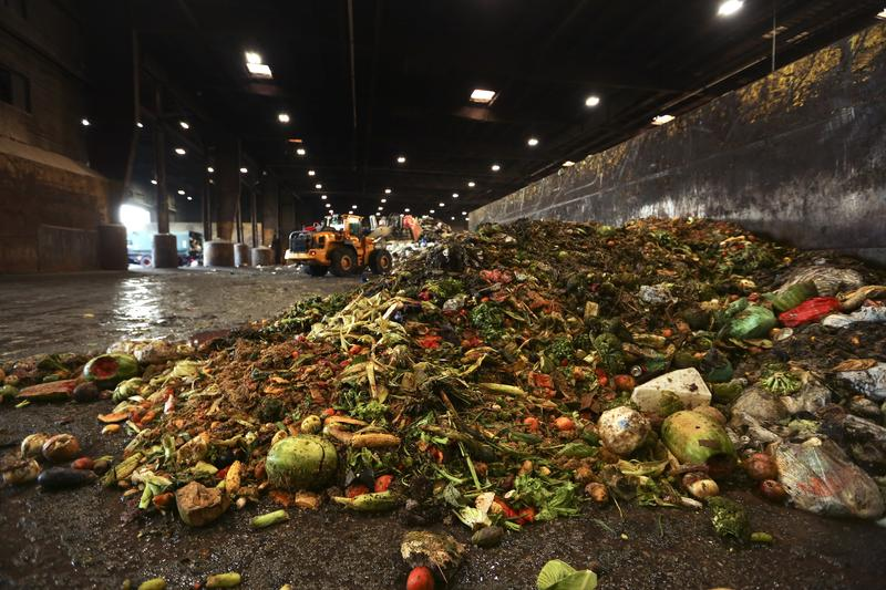 What is the United States Doing About Food Waste?