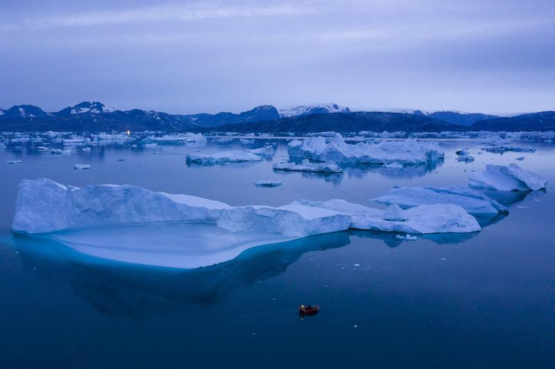 Ecological Grief: a Barely Understood Consequence of Climate Change