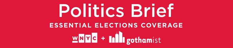 Politics Brief Newsletter Banner