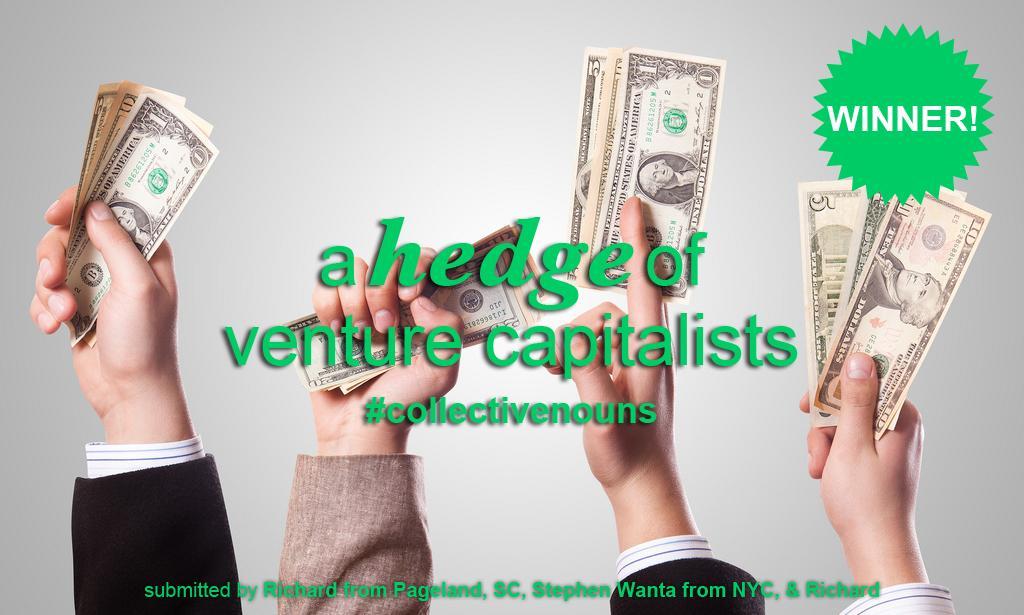 A hedge of venture capitalists
