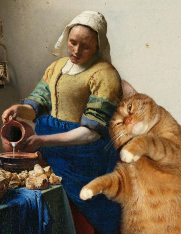 Cat meets Vermeer
