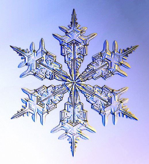 JUST FOR TWEENS - Snowflake Science!