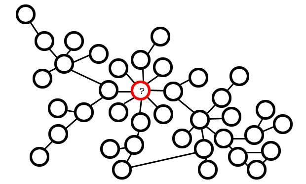 typhoid diagram
