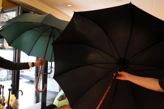 rain umbrella - ShopWiki