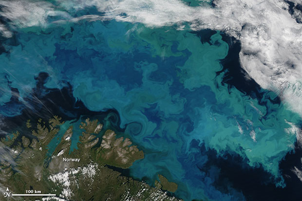 A massive bloom of phytoplankton in the Barents Sea, most likely containing coccolithophores.