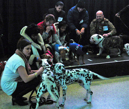 After auditions, all of the contestants wait with their owners for the judges' decision.